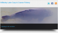 Willesley Lake Carp & Coarse Fishery